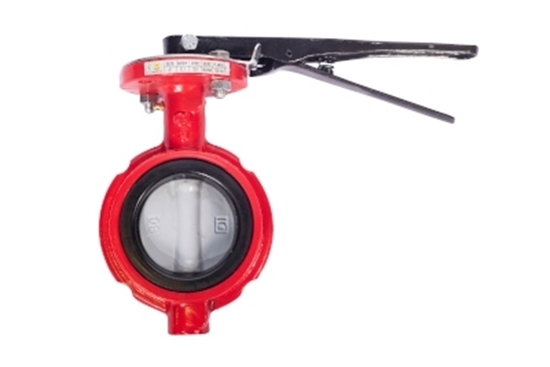 "3"" Butterfly Valve with Nylon Coated Disc"