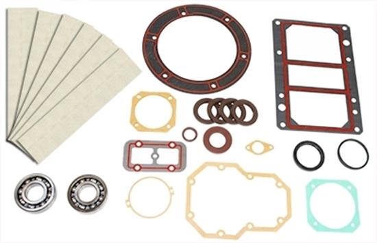 PM60W Rebuild Kit With Bearings