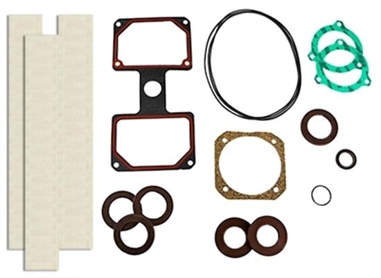 PM80T Vacuum Pump Rebuild Kit Without Bearings