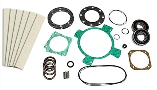 PM100T Vacuum Pump Rebuild Kit With Bearings