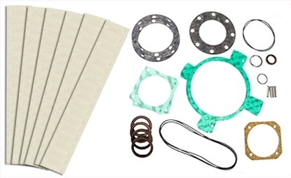 PM100T Vacuum Pump Rebuild Kit Without Bearings