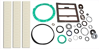 PM200 Rebuild Kit With Bearings