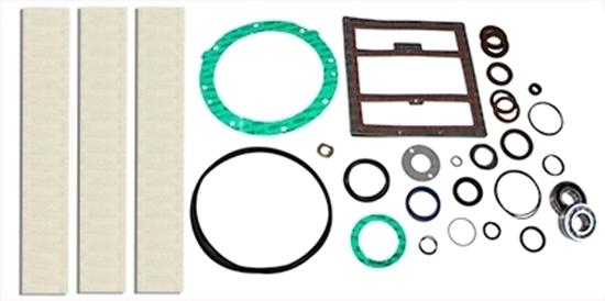 PM200 Rebuild Kit With Bearings