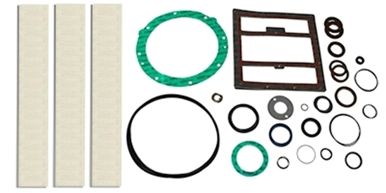 PM200 Rebuild Kit Without Bearings