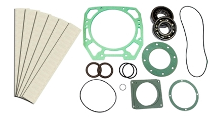 PM2600 Rebuild Kit With Bearings