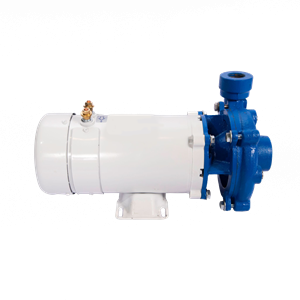 Picture for category Washdown/Fill Pumps