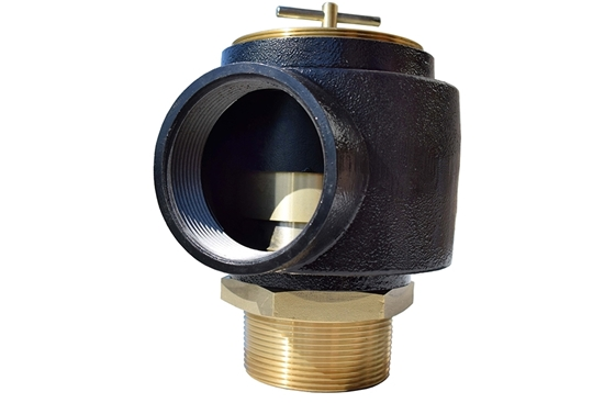 """Picture of 2"""" Safety Relief Valve"""