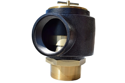 "Picture of 2.5"" Safety Relief Valve"