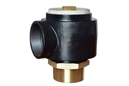 "Picture of 2"" Vacuum Relief Valve"
